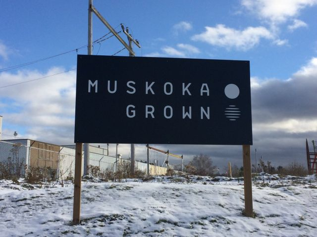 Muskoka Grown Wholesaling 600lb of Cannabis to Producer