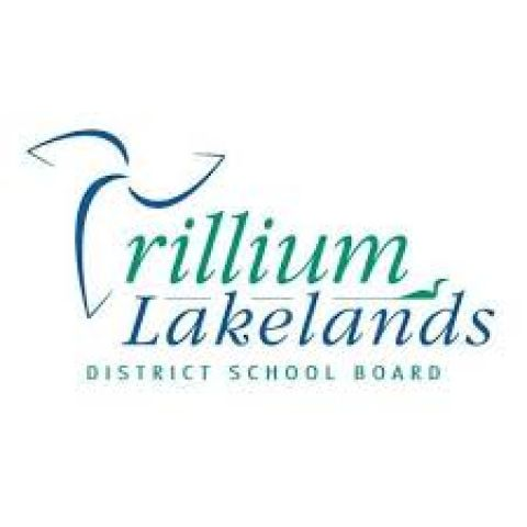 No Report Cards For Elementary Students Due To Labour Actions - TLDSB