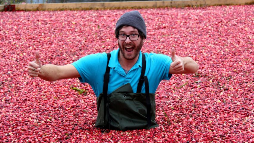Bala Cranberry Festival Cancel 2020 Edition