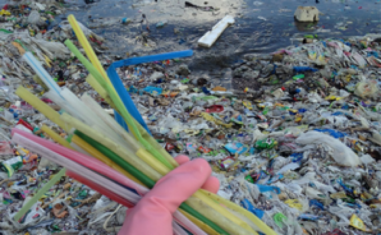 Bracebridge Councilor Calls For Ban On Plastic Straws