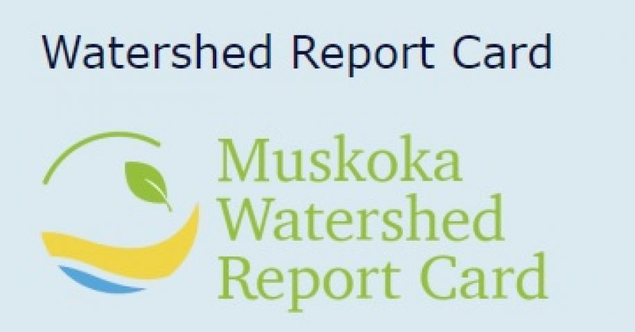 Muskoka Watershed Report Card Out