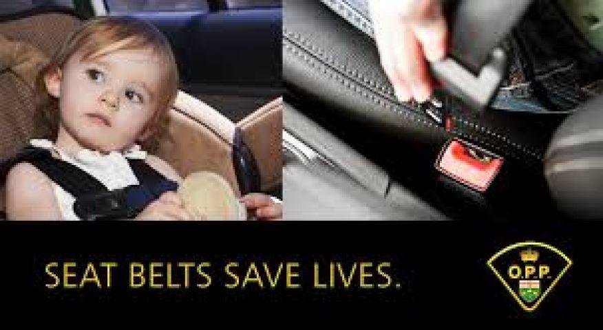Seat Belt Blitz Begins Today
