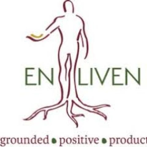 Enliven Holds 3rd Annual Cancer Panel Discussion With Experts